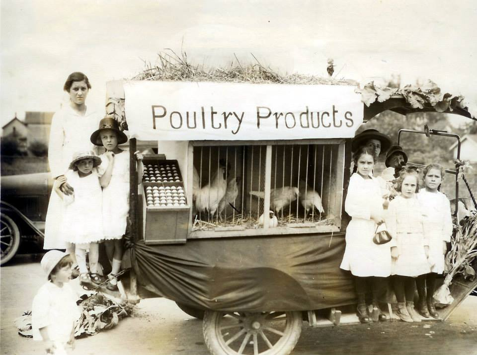 Selling Poultry
