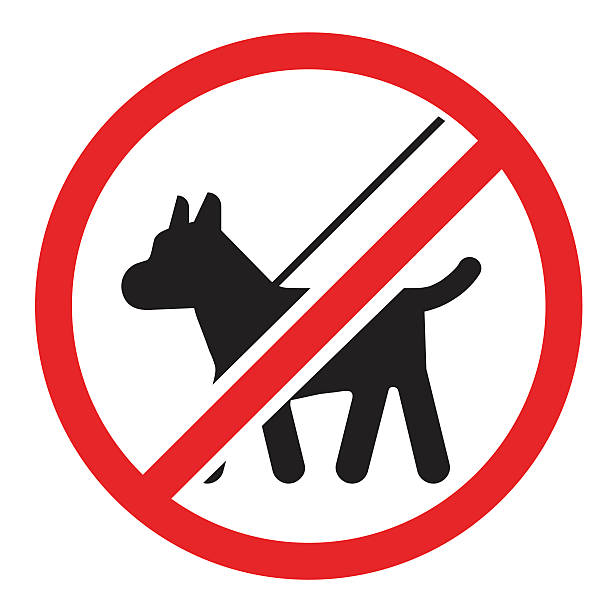 Sorry, due to COVID restrictions, dogs, except service dogs, are not allowed at the Market. Please leave your pets at home.